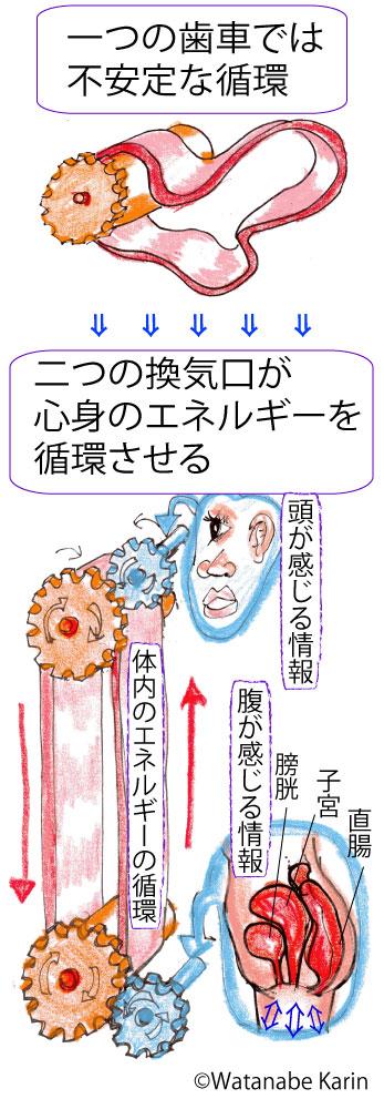 学説循環図