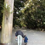 ふんどしパンツ【シルク】旧暦正月に